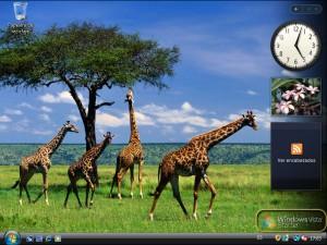 Escritorio Windows Vista Starter