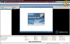 VmWare server virtualizando Windows 7