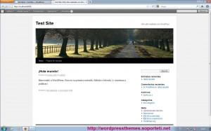 Wordpress bajo Web Platform Installer